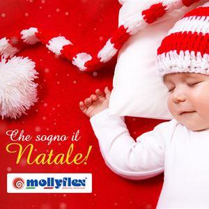 Che sogno il Natale - Promozione Molliflex